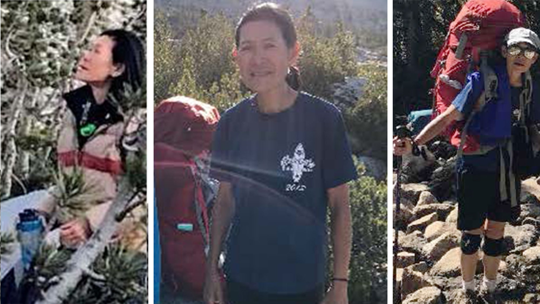 "Diane Salmon, 63, who went hiking in Kings Canyon National Park, was ""found alive and well"" on Sunday after she was reported missing on Friday, officials said."