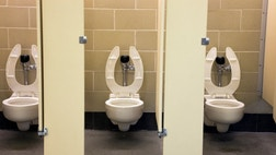 The popular notion that urine is sterile is a myth, new research finds.