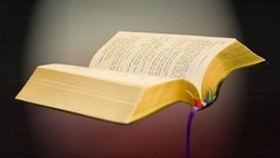 Is the Bible relevant in ? You won't know until you read it.