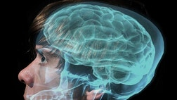 By focusing on images of letters, people with electrodes in their brains can type with just their minds, scientists now reveal.