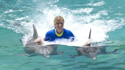 Looking for a memorable vacation experience? Put a dolphin encounter at the top of your list.