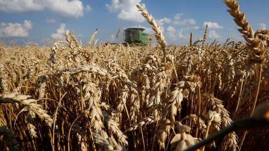 DuPont Pioneer VP on Using Technology to Give Farmers, Consumers More Choices