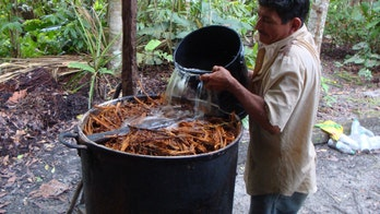 Ayahuasca may have potential to treat eating disorders, scientists claim