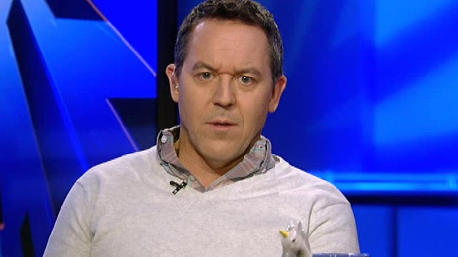 Gutfeld: Left won't let terrorism obscure the real fight