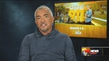 Cesar Millan says Latin America's dogs are skinnier, but don't have as many psychological issues.