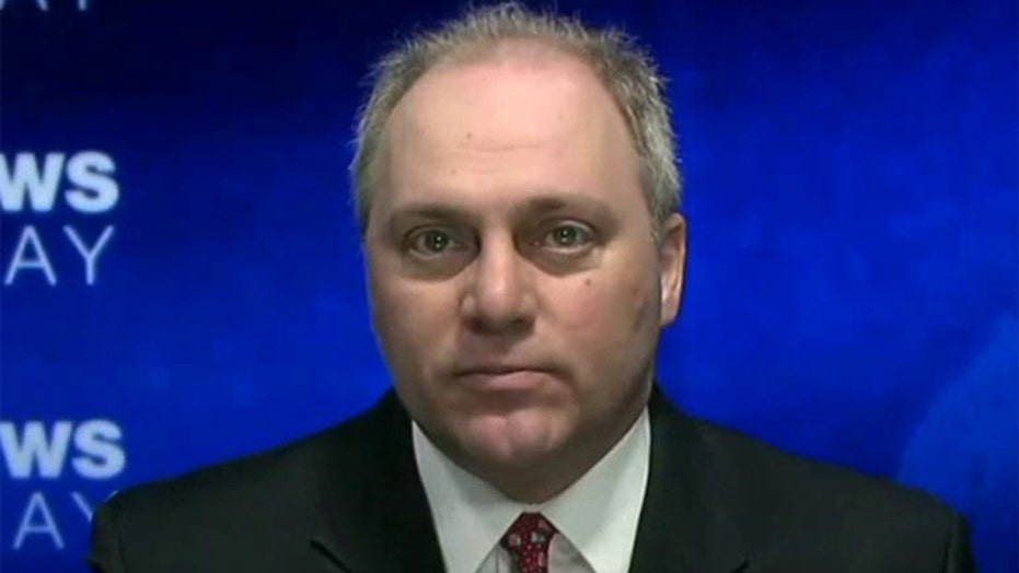 Rep. Steve Scalise talks DHS funding fight