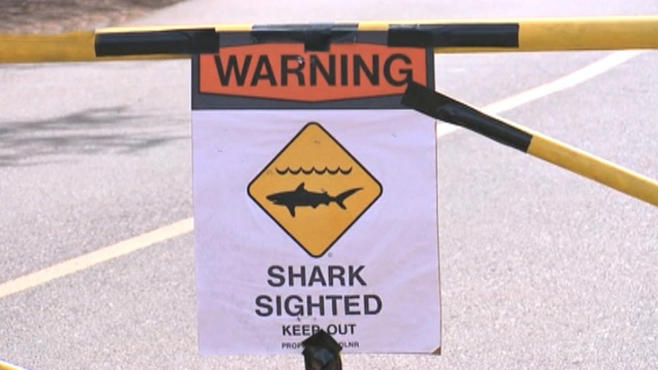 65-year-old woman killed after shark attack