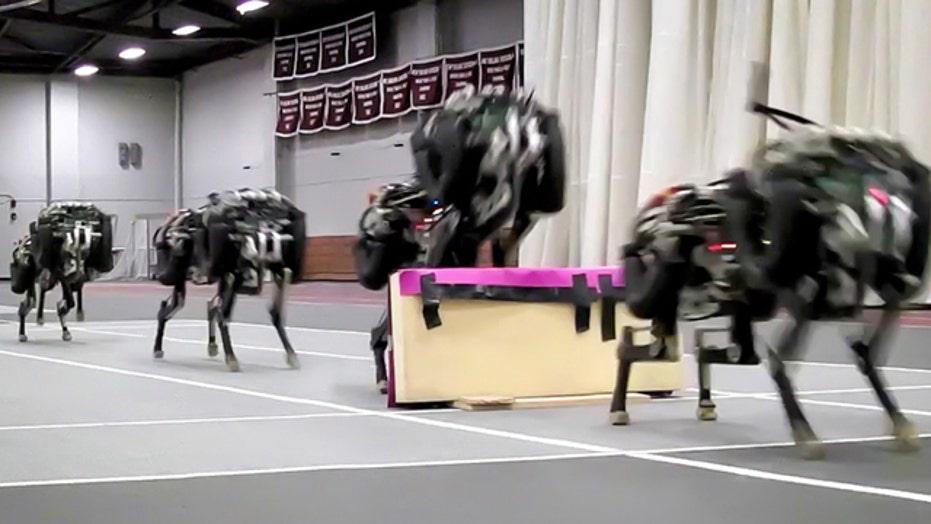 MIT 'cheetah-bot' leaps hurdles