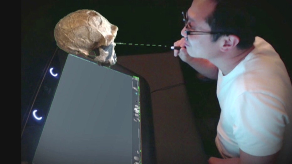 A 3-D look inside the body