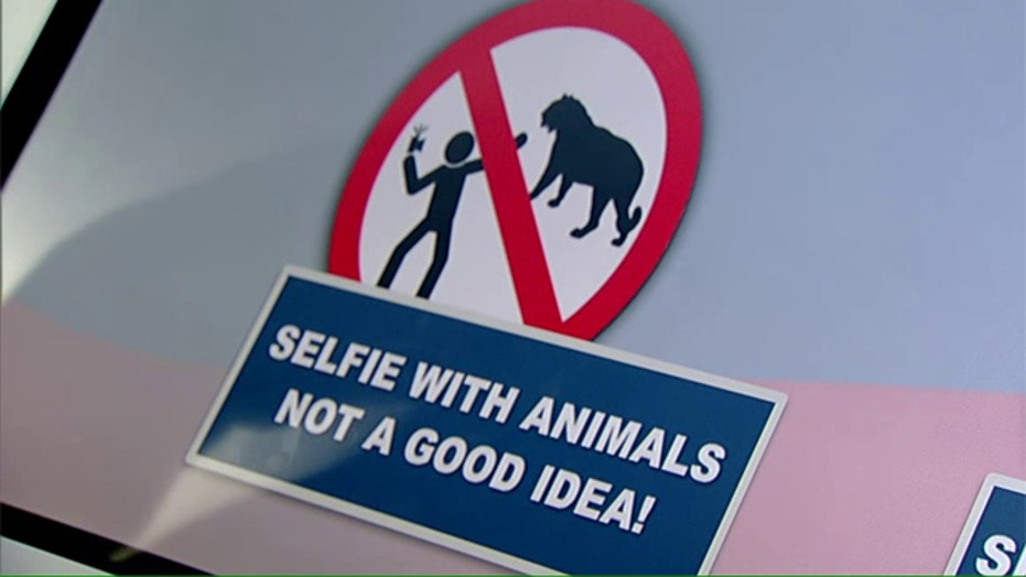 Death by selfie? Russian police issue guide to staying safe