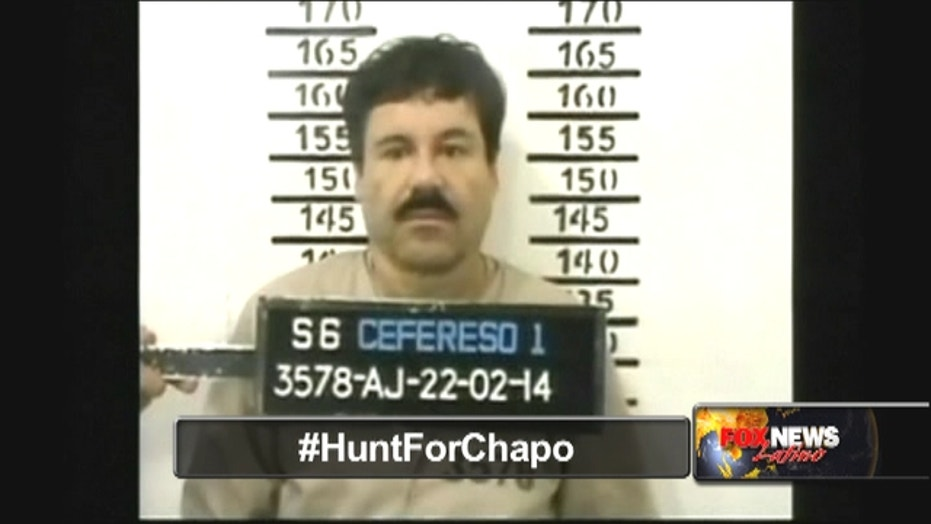 Theory: Imprisoned Chapo was actor