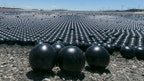 Balls could create bacteria breeding ground, increase water evaporation