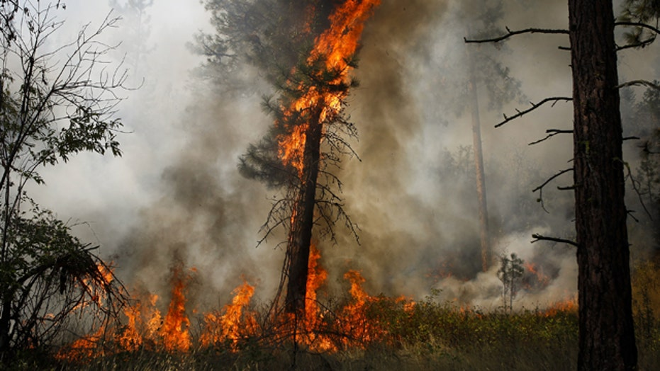 Washington state wildfires now largest in state's history
