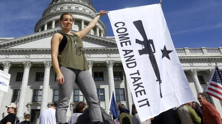 Gun control debate gets heated on 'The Five'