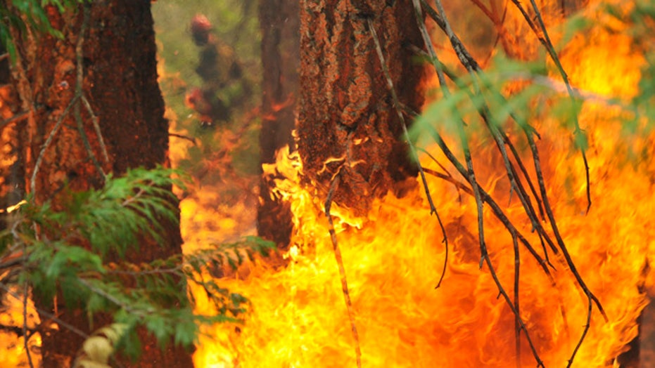Western wildfires force Americans to change holiday plans