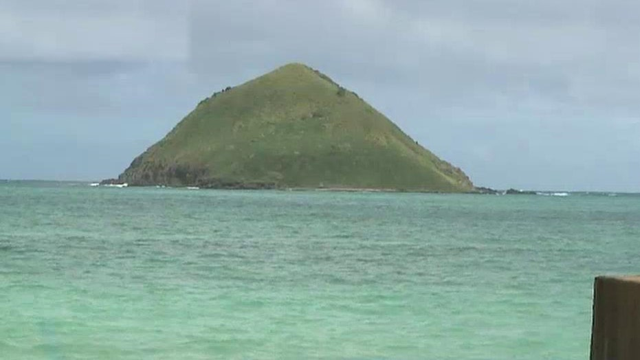 Two people attacked by sharks off Hawaiian coast