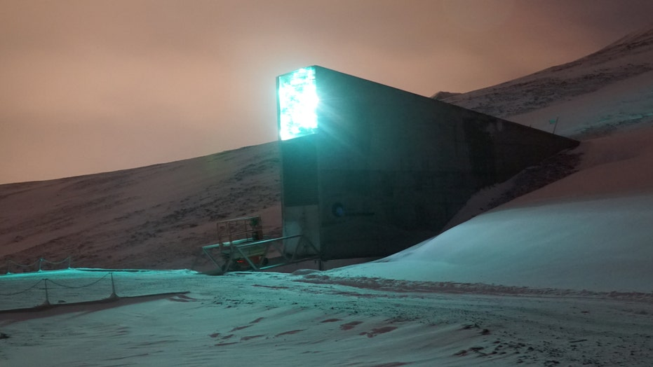 Syrian war prompts withdrawal of seeds from doomsday vault