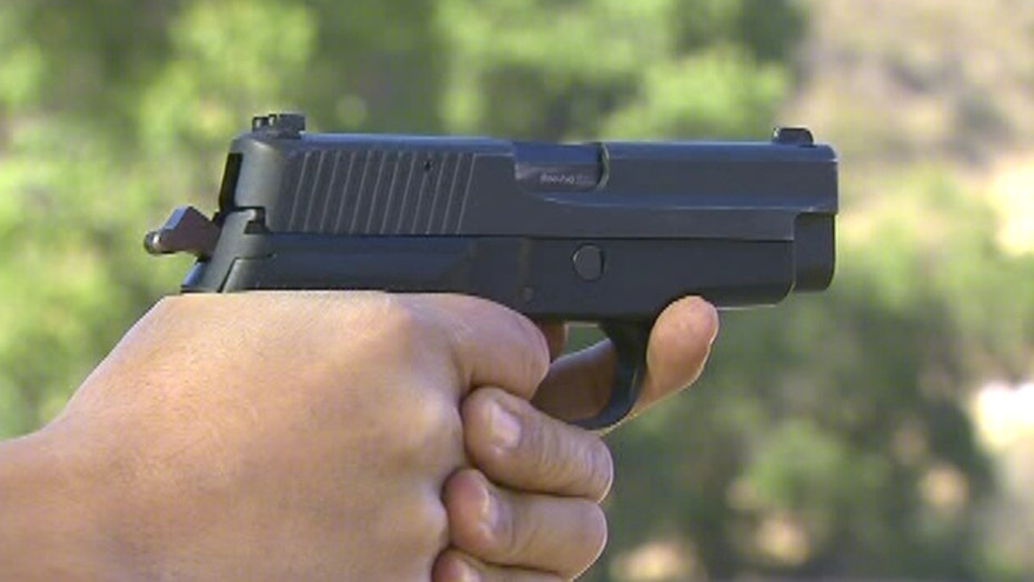 Guns 101: Hand guns