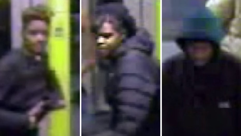 Persons of interest in brutal attack on vet sought by police