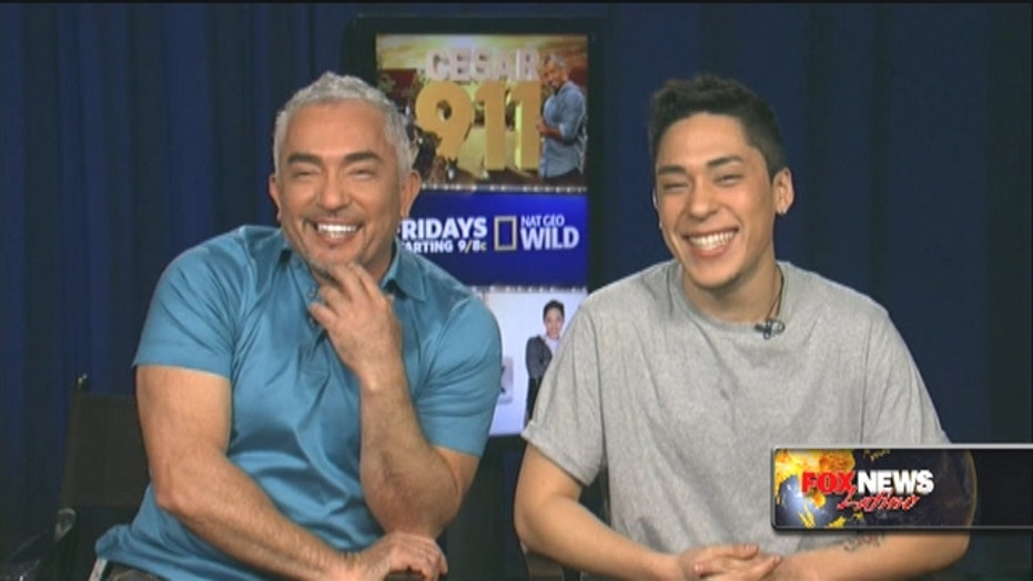 Talking pets with Cesar Millan and his son