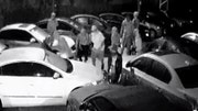 Raw video: Tampa police release security footage of gang who raided Florida car dealership