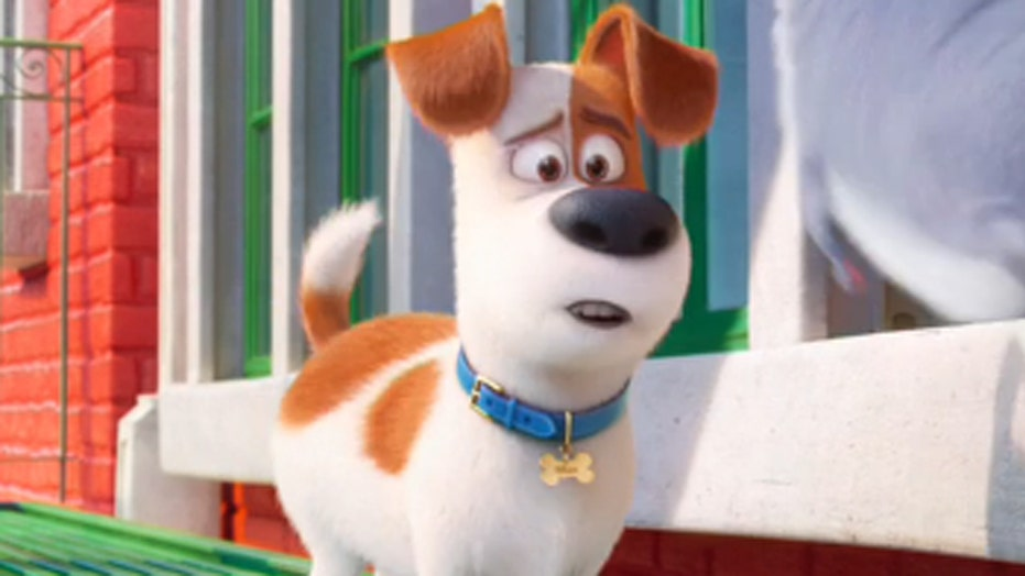 'The Secret Life of Pets' leads this week's new releases