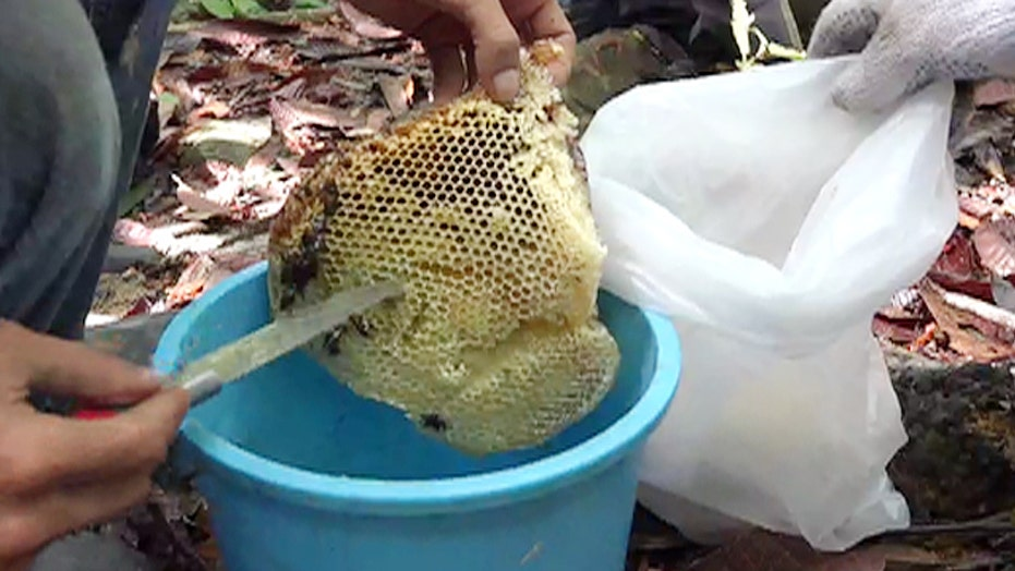A rare honey packs big benefits