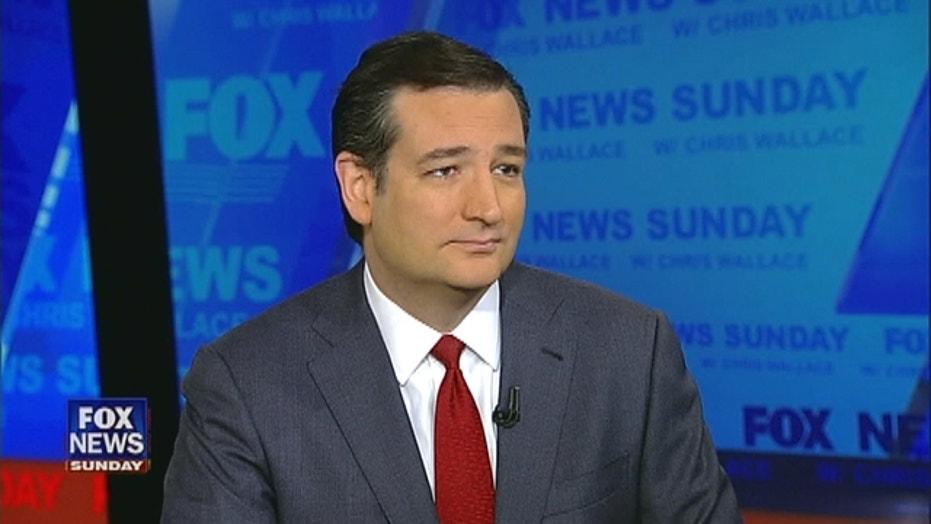 Sen. Ted Cruz Talks Gun Control, Stance on Issues