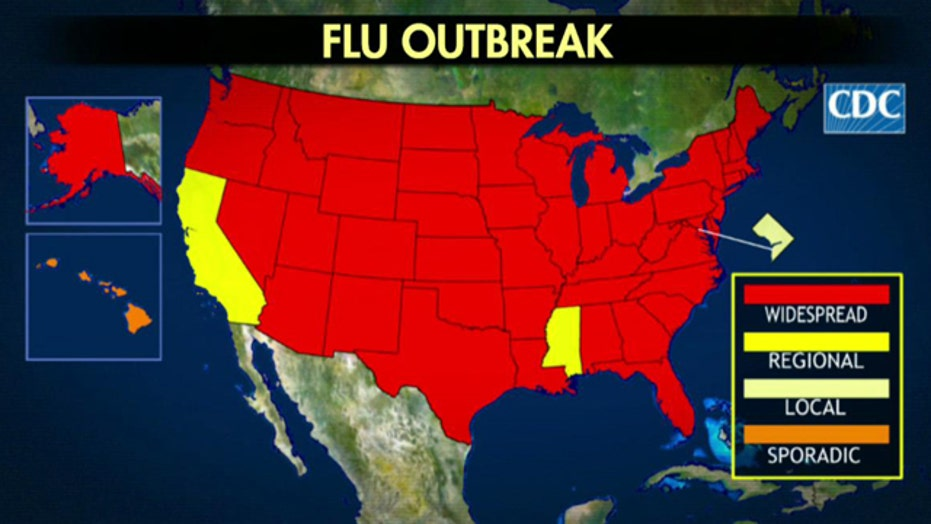Death toll climbs as flu 'epidemic' rages across country