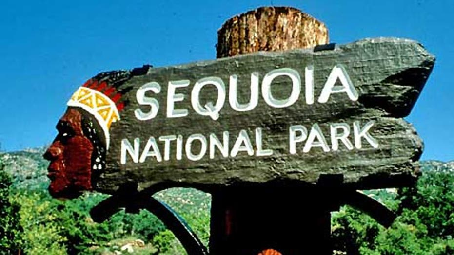 Sequoia National Park In 5
