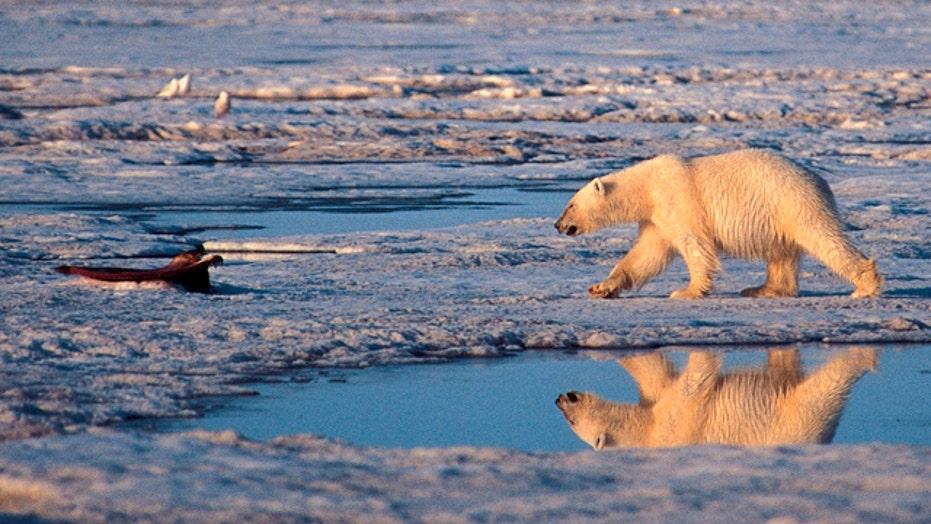 Bias Bash: Media push global warming agenda