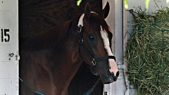Belmont Stakes: California Chrome, other contenders true athletes