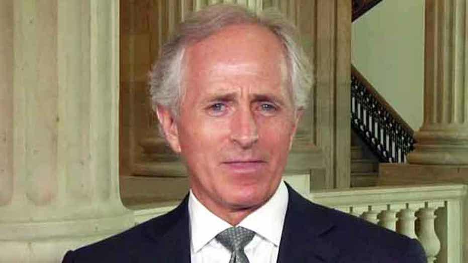 Corker 'thrilled' after Senate OKs 'border surge' amendment