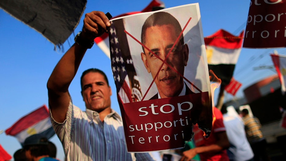 Congress split over whether to cut off aid to Egypt