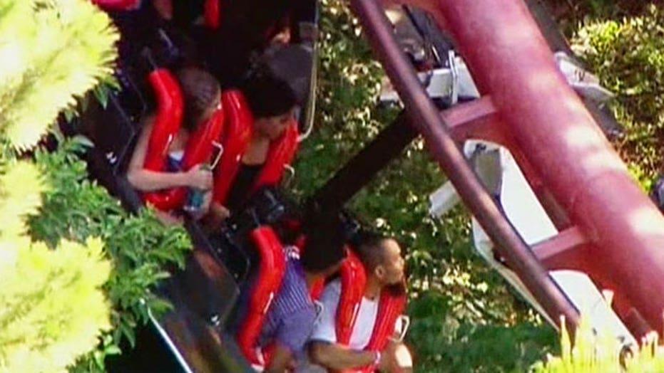 Fallen tree branch halts rollercoaster ride
