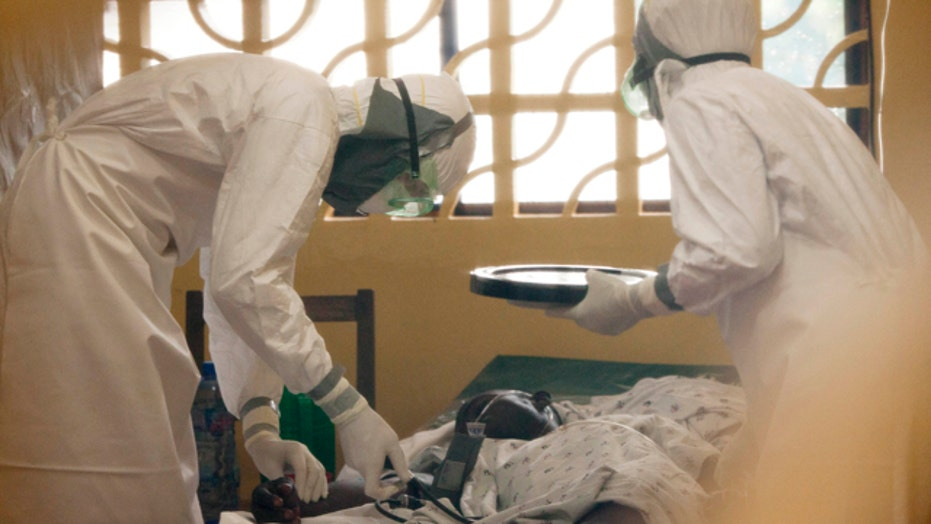 Could ebola outbreak spread by air travel?