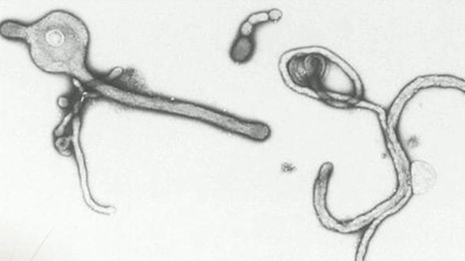 Latest on Ebola health scare