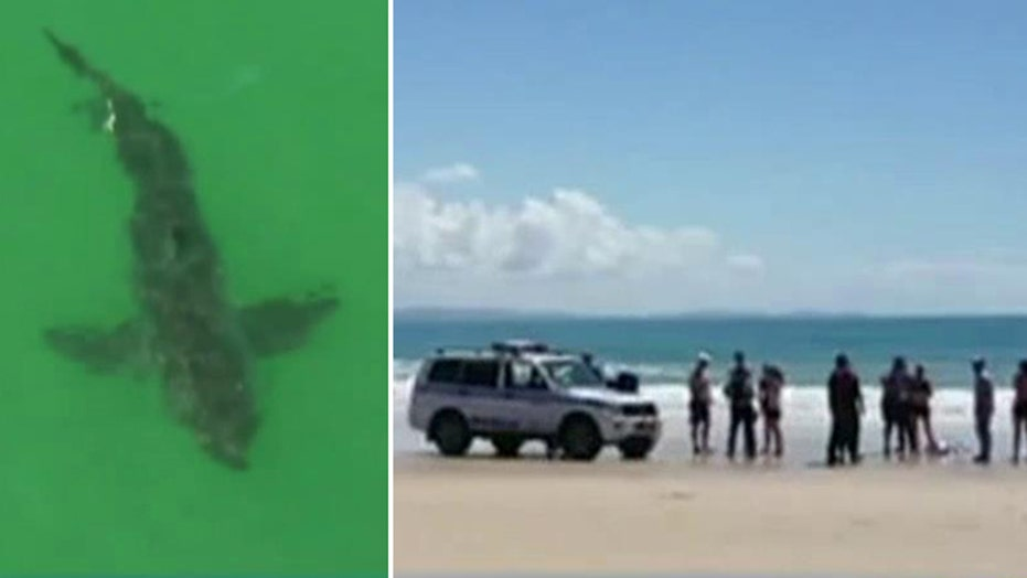 Deadly shark attack off Australian coast