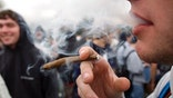 New study shows teens who smoke marijuana daily are over  percent less likely to finish high school