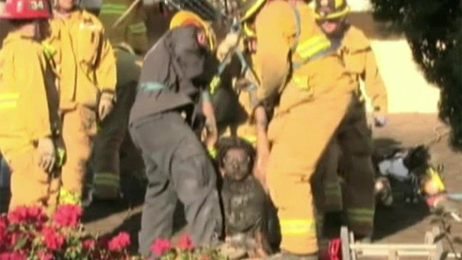 Woman tries to break-into house through chimney, gets stuck