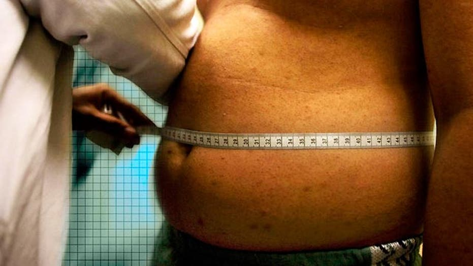 New study puts four popular diets under the microscope