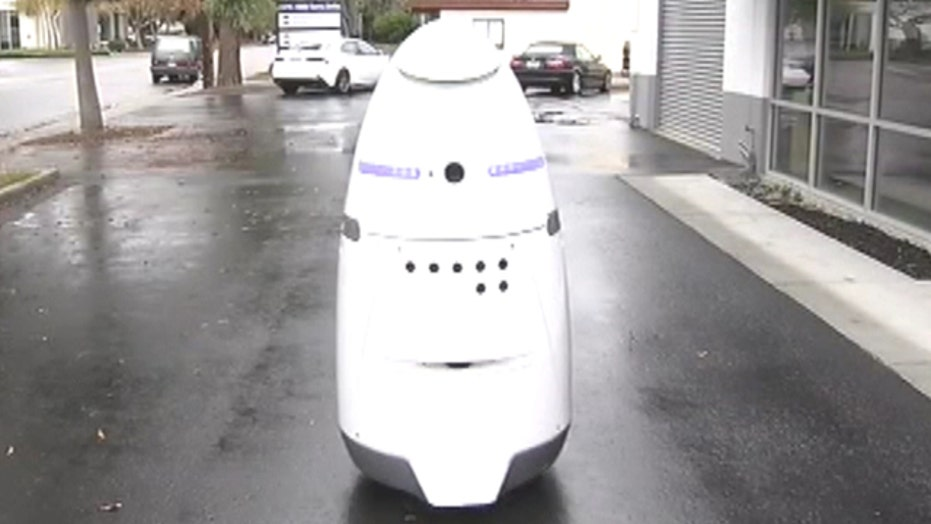 Mall cop of the future?