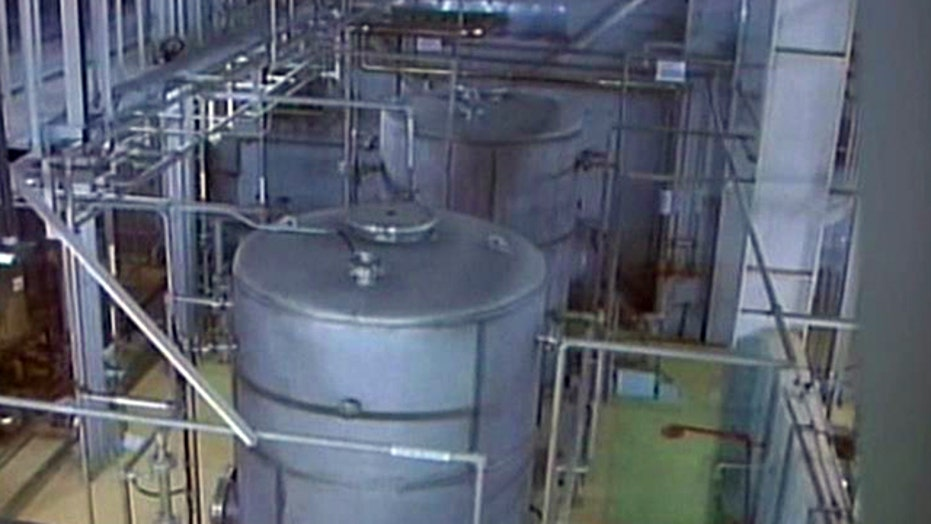 Iran says it needs more nuclear power plants