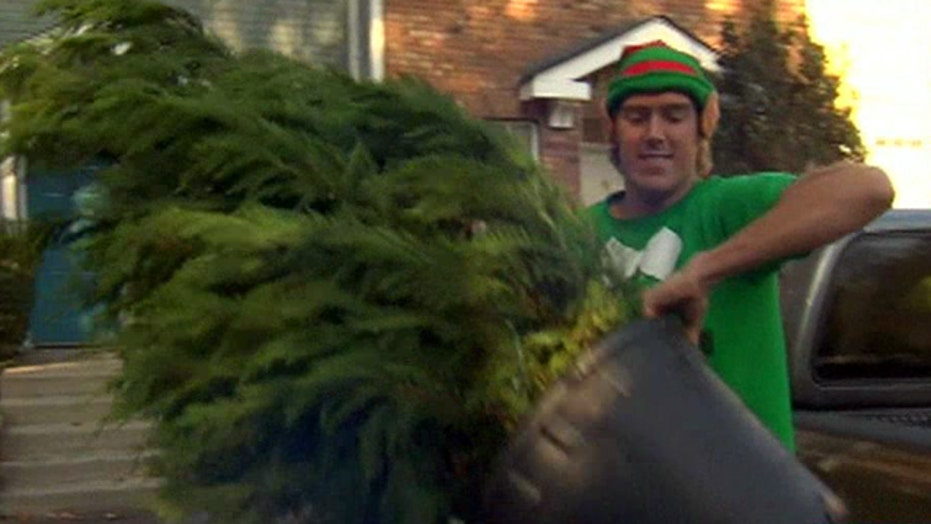 Popsicle company turns into Christmas tree elves in winter