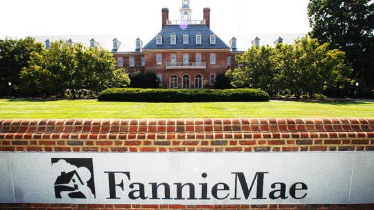Possible Fannie, Freddie IPO whets Wall Street's appetite