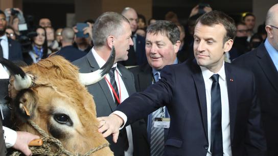 Angry French farmers boo President Macron at Paris ag fair