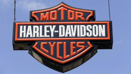 Harley-Davidson's young riders hit record, despite retail sales slump