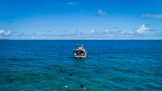 IBM AI robots deployed to clean Earth's oceans
