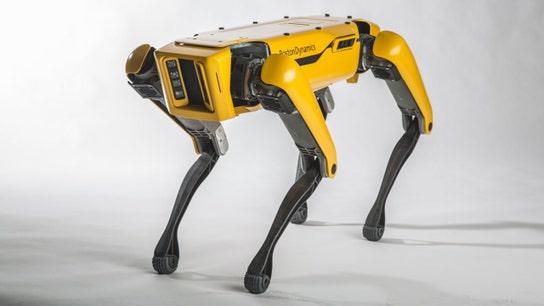 Amazon CEO Jeff Bezos walks robotic dog – richest man's best friend?