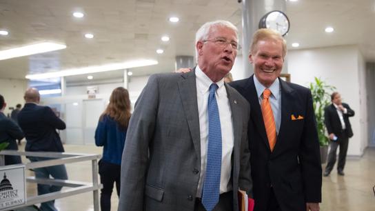 Congress OKs Trump bid to widen private care at besieged VA